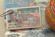 Get a Registered Drivers License in Florida